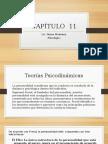 Capítulo 11 (3).Docx