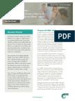 Resumen_Profesional_FMEA_RP104.pdf