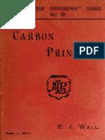Carbon Printing 00 Wall