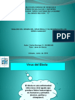 Lista Laminas Tesis Del Ebola...