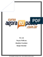AEP PCCE PecasPraticas Aula07 SergioBautzer