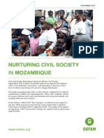 Nurturing Civil Society in Mozambique
