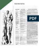 Hercules Muscle Chart Front.pdf