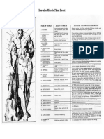 ...Muscle Chart Front.pdf