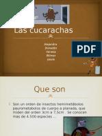 Las Cucarachas 12315