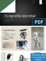 Ecografía escrotal