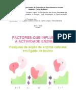 Fatores que influenciam a atividade enzimatica