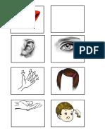 parts of body.docx