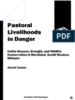 Pastoral Livelihoods in Danger
