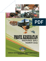 Bali Profil 2015