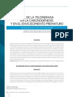 Rol de La Telomerasa por Victor Orozco y Camilo Caicedo