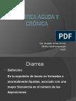 Diarreas Agudas y Crc3b3nicas 2011 II