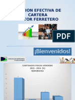 Gestión Efectiva de Cartera Sector Ferretero