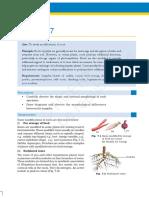 kelm307.pdf