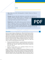kelm309.pdf