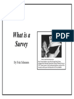 What is a survey.pdf