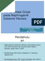 Journal Dinda