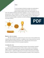 Resumo Sobre Vírus