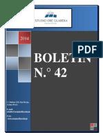 Boletín 42 (2014).pdf