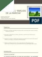 Practica No1 - analisis de la marcha