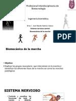 Fisiologia y Biofisica 2 - Clase