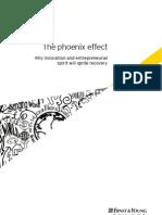 The Phoenix Effect 2009 (Final Version)