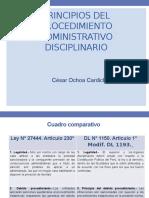 Presentacion Sobre Principios Pad - Cesar Ochoa