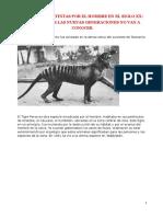 10 Especies Extintas Por El Hombre en El Siglo Xx