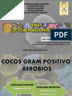 Tema 5 Cocos Gram Positivo 2015