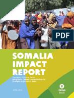Somalia Impact Report