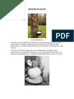 INDUSTRÍA DE CAUCHO elaboracion.docx