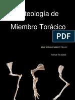 OsteologiaMTcomparado