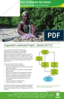 Effectiveness Review: Copperbelt Livelihoods Project, Zambia