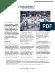 007_indicadores.pdf