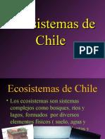 Ecosistemas de Chile