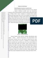 bandotan 1.pdf
