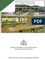 ABNT Puc.pdf