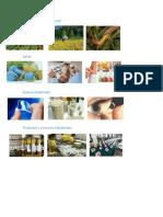 Agricultura y Alimentación Imagenes