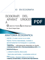 7. Ecografia Urogenital - Prostata