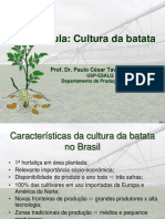 aula cult batata_2013.pdf