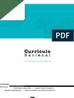 Curriculo Nacional 2017 Word