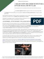 Principios de Seleccion de Ejercicios Para Aumentar Masa Muscular
