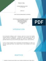 Trabajofinal_313.pptx