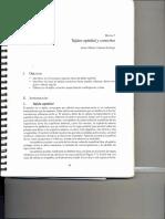 Tejidos Biologia Basica (histologia)