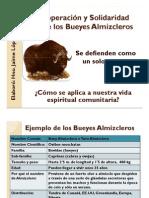 SOLIDARIDAD BUEYES ALMIZCLEROS