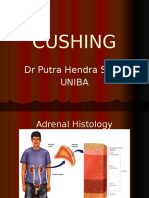 Adrenal Cushing
