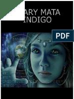 Diary Mata Indigo