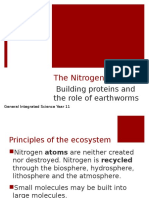 nitrogen cycle and building proteins