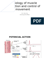 Physiology of Muscle Contraction and Control of Movement