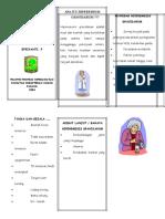 Leaflet gravidarum.doc